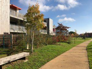 Eco-quartier à Sainte-Bazeille (47)